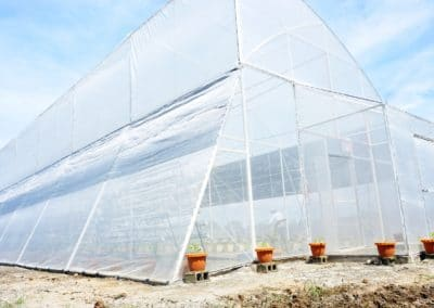 Lucky Agri Eco Tourism – Integrated Hydroponics Greenhouse