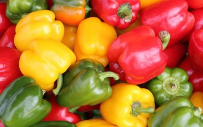 Health Benefits 101: BELL PEPPERS