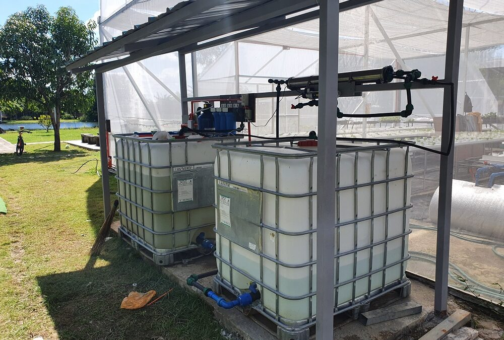 Reverse Osmosis Water Filtration System in Hydroponics Greenhouse